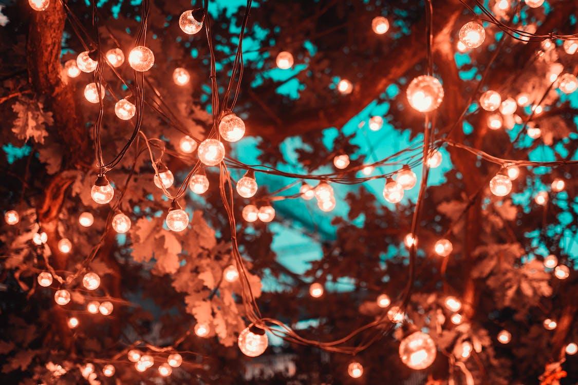 Cadena De Luces Marrones En El árbol