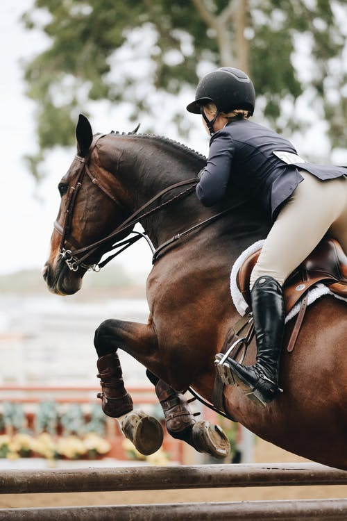 Photography of Person Riding Brown Horse