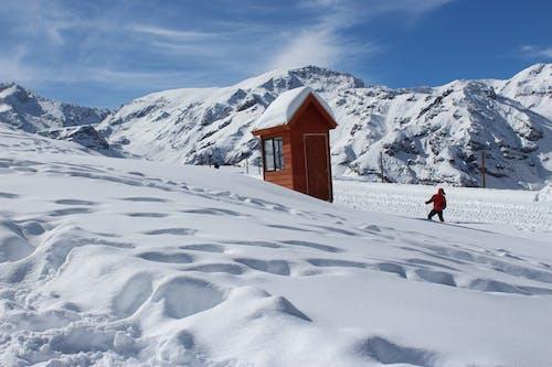 Ilmainen kuvapankkikuva tunnisteilla alamäki, flunssa, henkilö, hiihtäjä