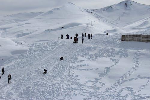 คลังภาพถ่ายฟรี ของ การเล่นสกี, การแช่แข็ง, กีฬา, ขาว