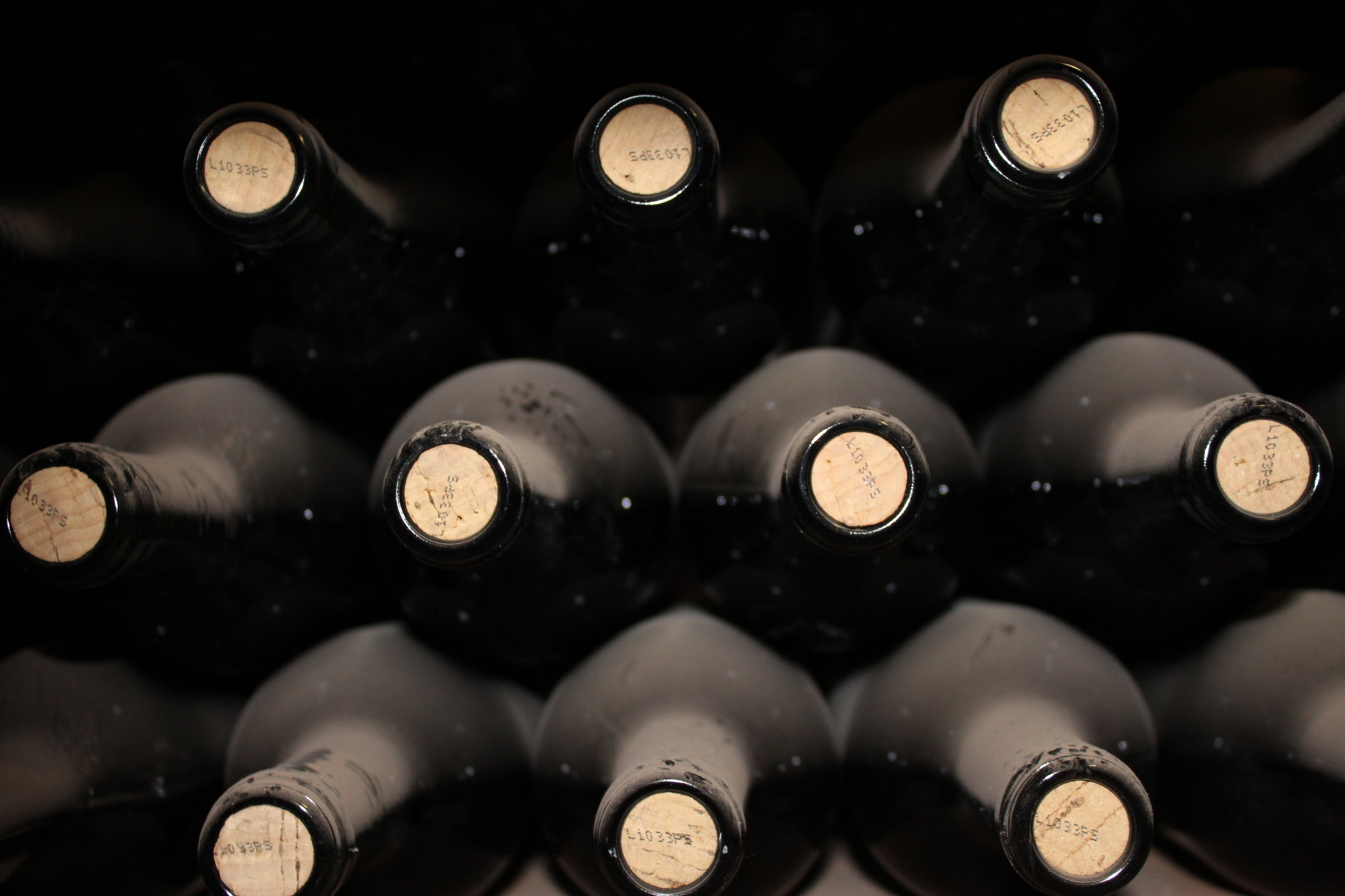 Free stock photo of red wine
