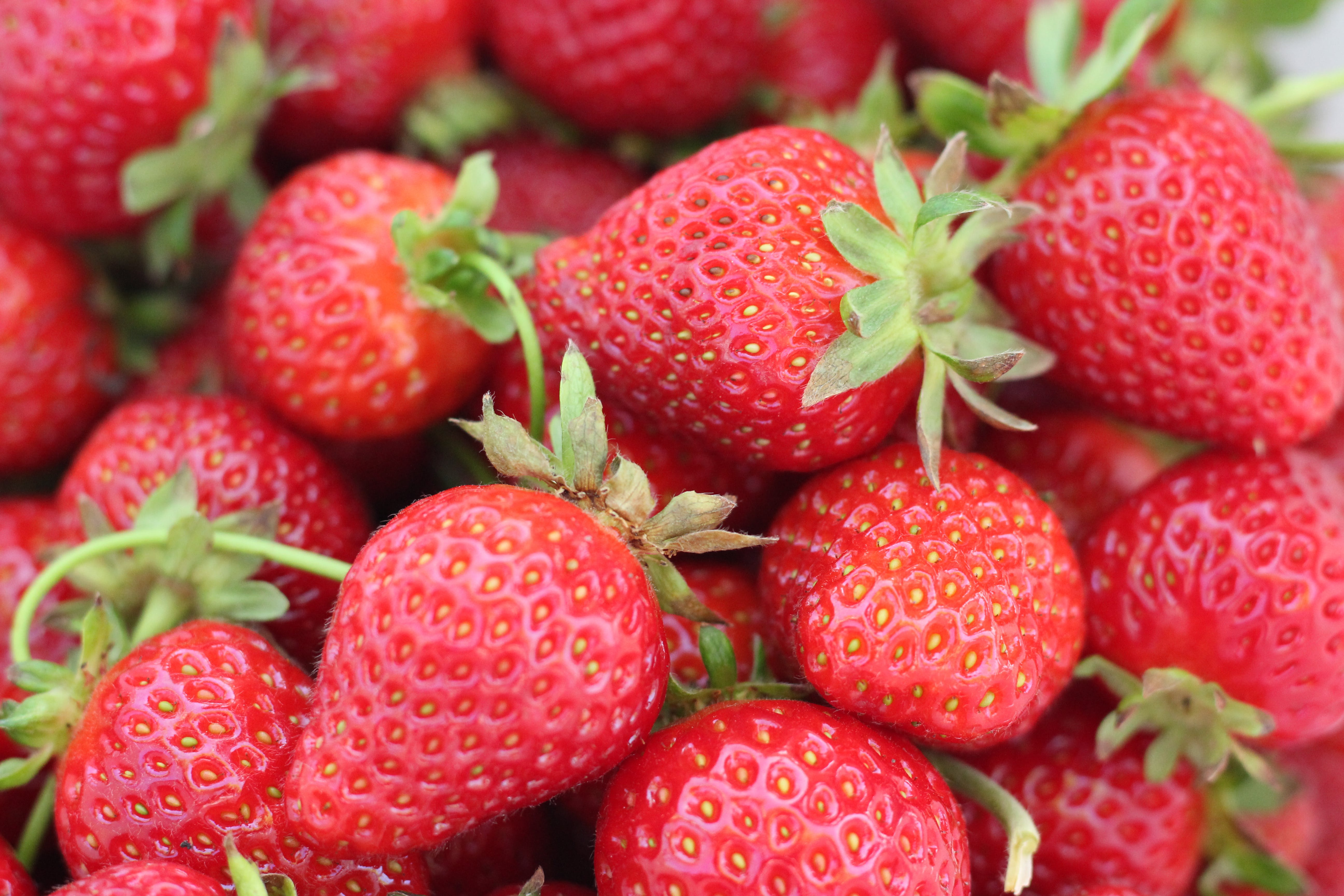 Strawberry Close Up Photo