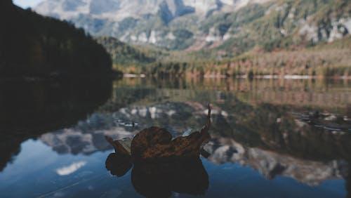 Foto profissional grátis de água, luz do dia, montanha, paisagem