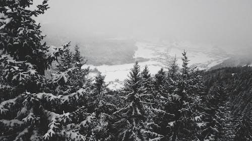 Kostenloses Stock Foto zu drohne blick, schneebedeckte berge, winter