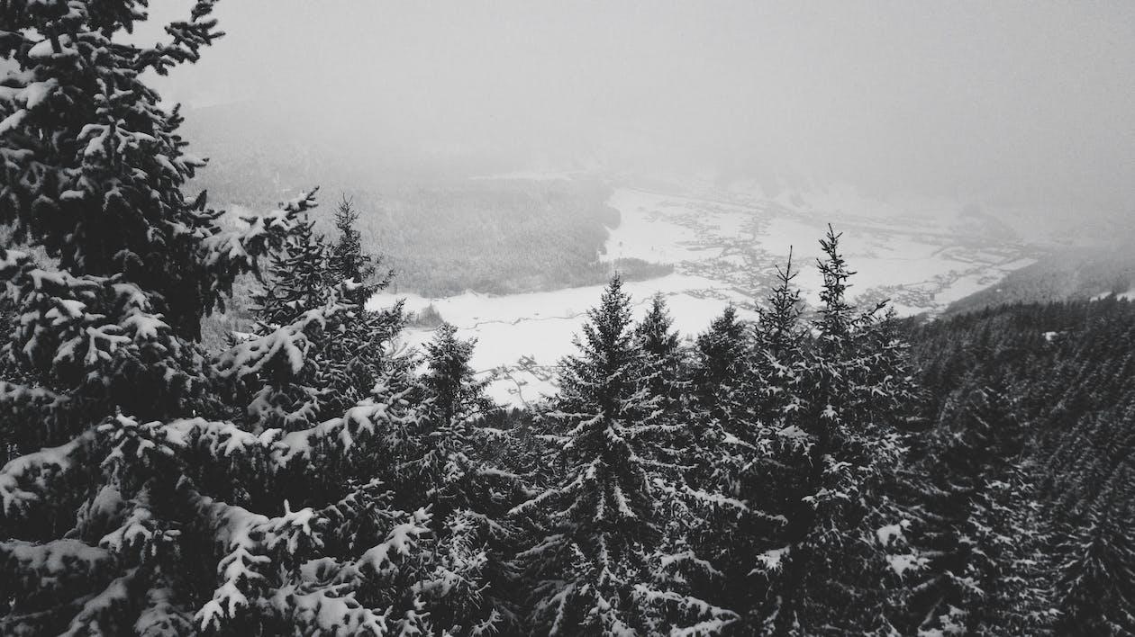 Безкоштовне стокове фото на тему «вид із дрона, засніжені гори, зима»