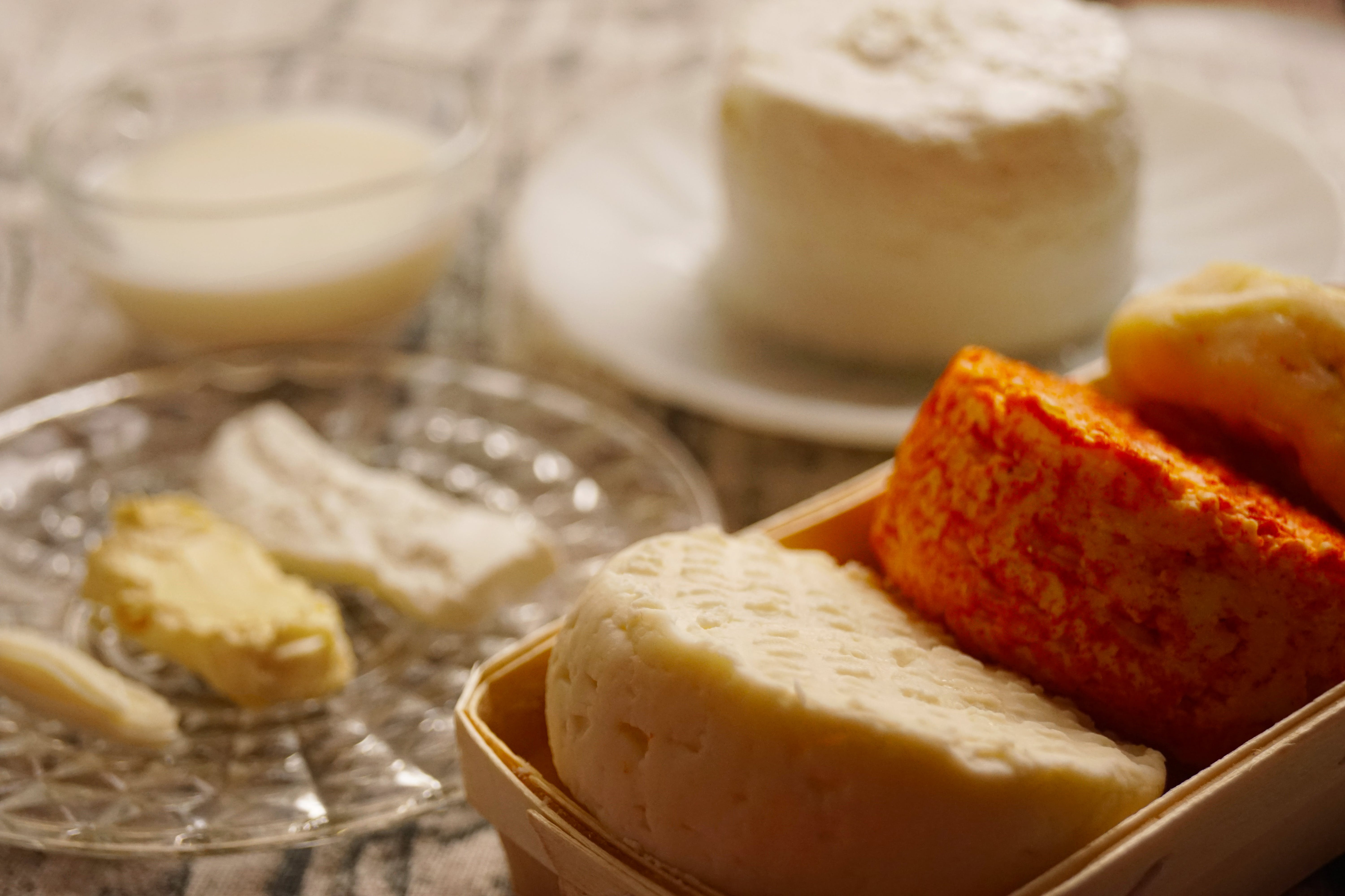 Free stock photo of food, milk, traditional, cheese