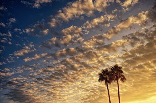 Fotobanka sbezplatnými fotkami na tému atmosféra, krajina, magická hodina, mraky