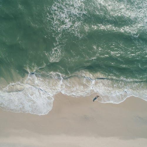 Osoba Na Plaży White Sand
