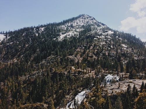 Δωρεάν στοκ φωτογραφιών με rock, βουνό, γραφικός, δέντρα