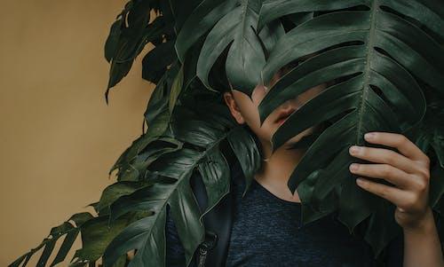 Kostnadsfri bild av ensam, fingrar, gömmer, håller