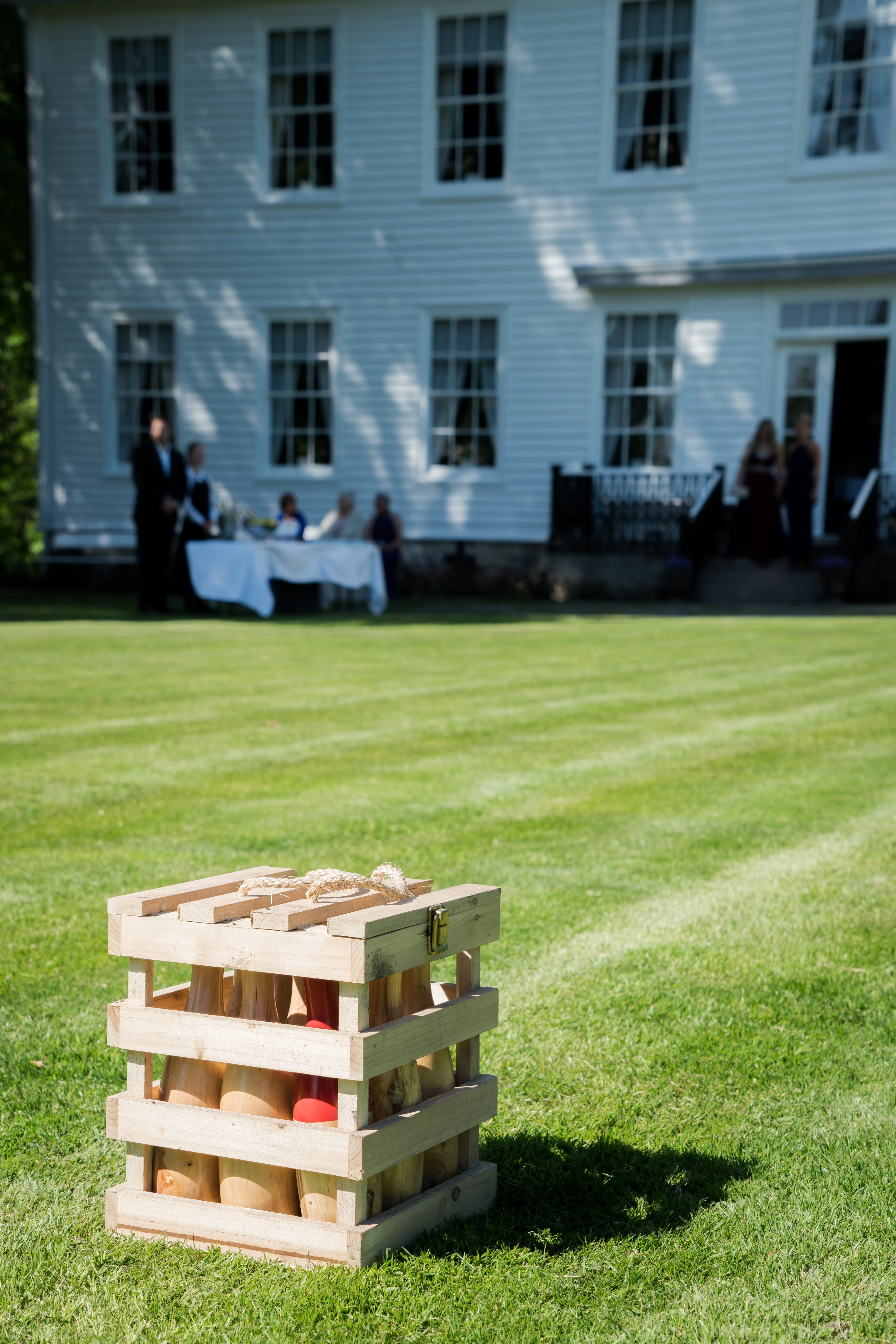 Free stock photo of party, green, wedding, games