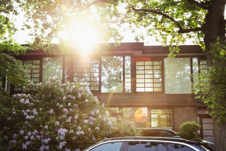 Foto profissional grátis de arquitetura, árvores, automóvel, de madeira