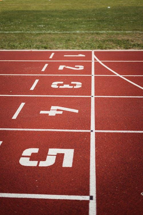 Running Field Photography