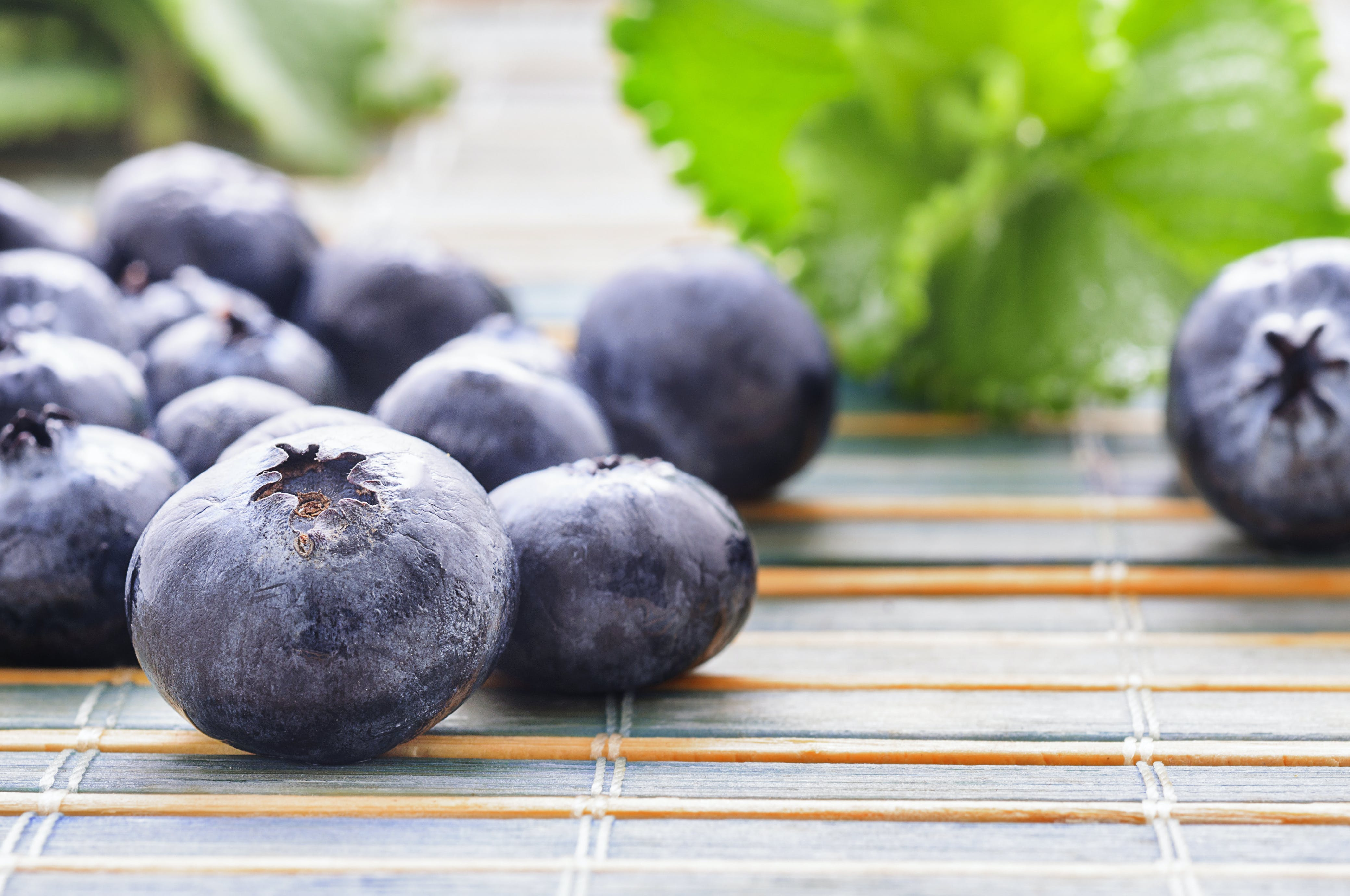 Gratis stockfoto met blauwe bessen, close-up, eten, fruit