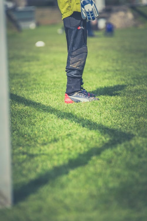 Gratis lagerfoto af atlet, fodbold, græs, kamp