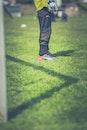grass, sport, game