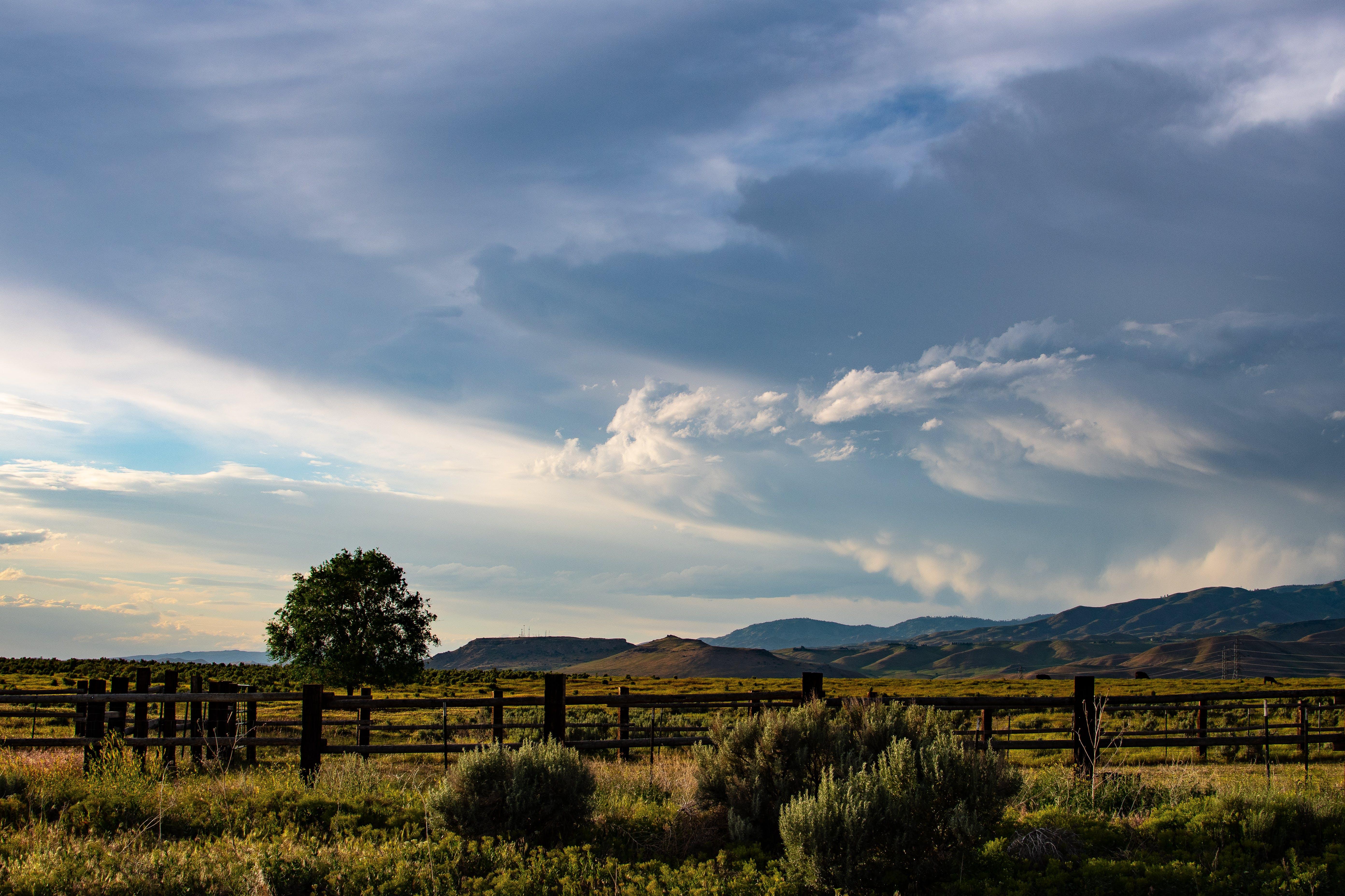 Green Field Under Gray Clouds