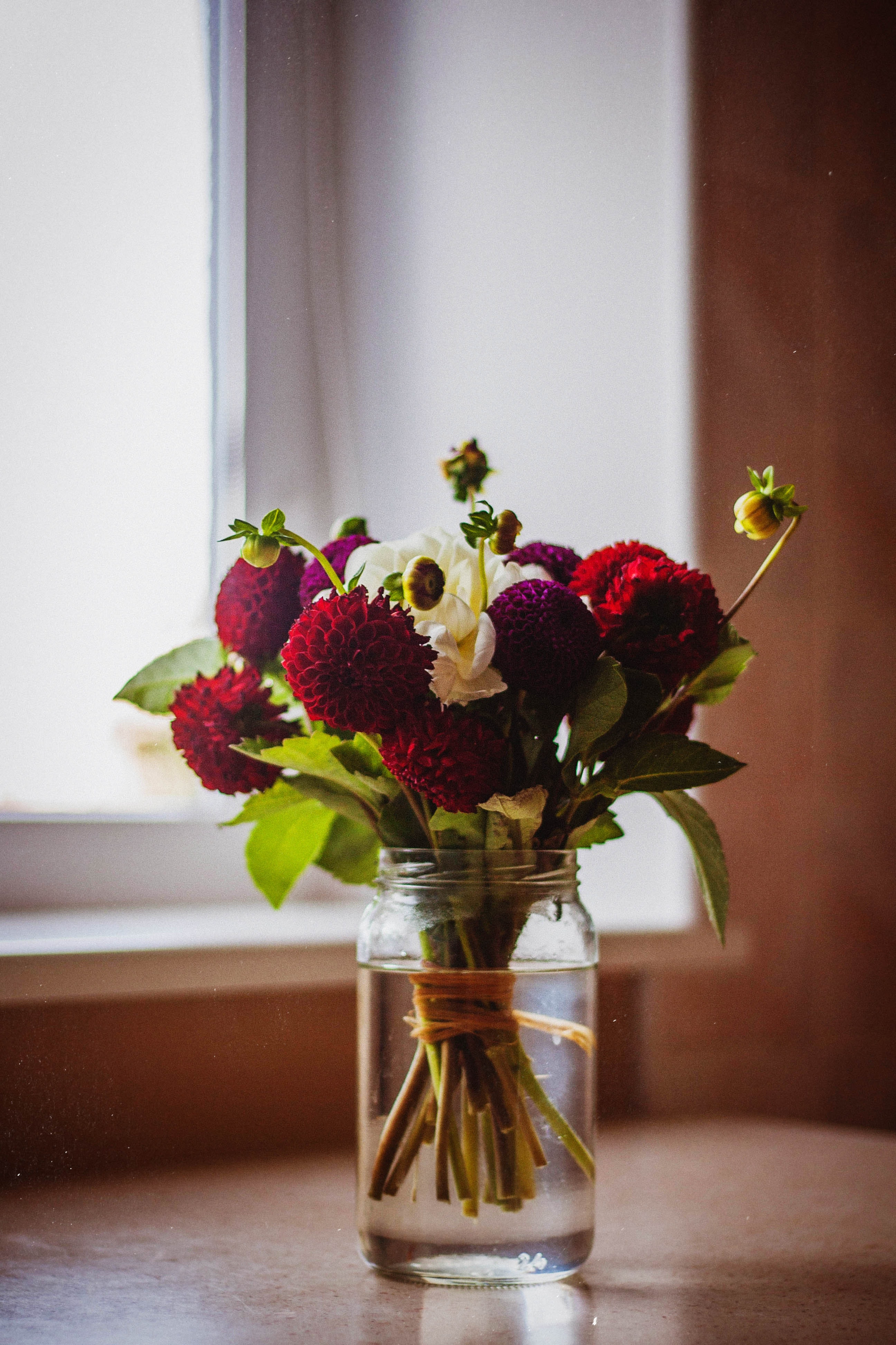 Close Up Photography Flowers In A Vase  C2 B7 Free Stock Photo
