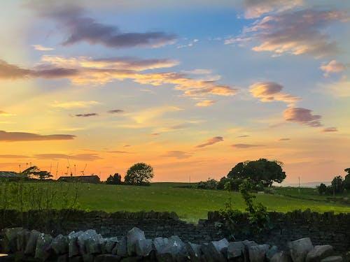 Fotos de stock gratuitas de al aire libre, amanecer, arboles, campo
