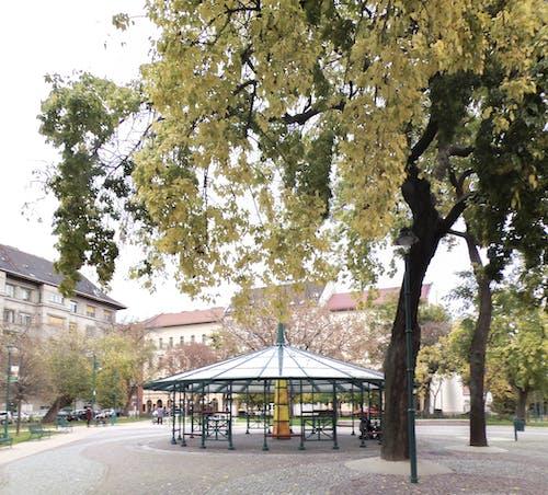 Free stock photo of Budapest, city, square, urban