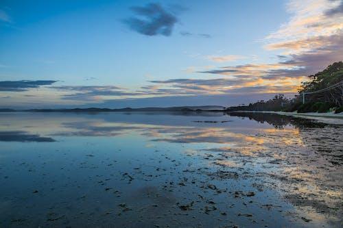干潮, 日の出, 雲, 青の無料の写真素材