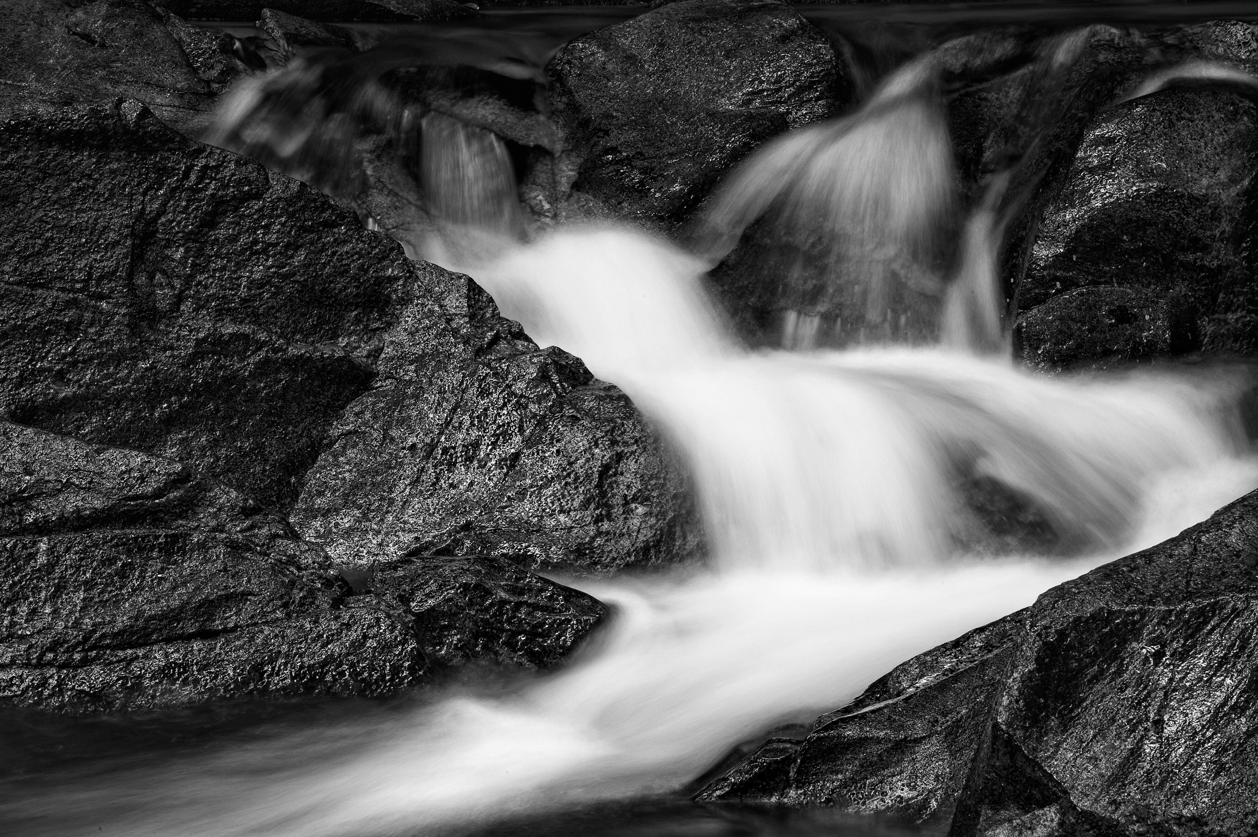 Free stock photo of black and white, black and-white, black forest, blue waters