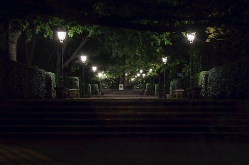 Free stock photo of city park