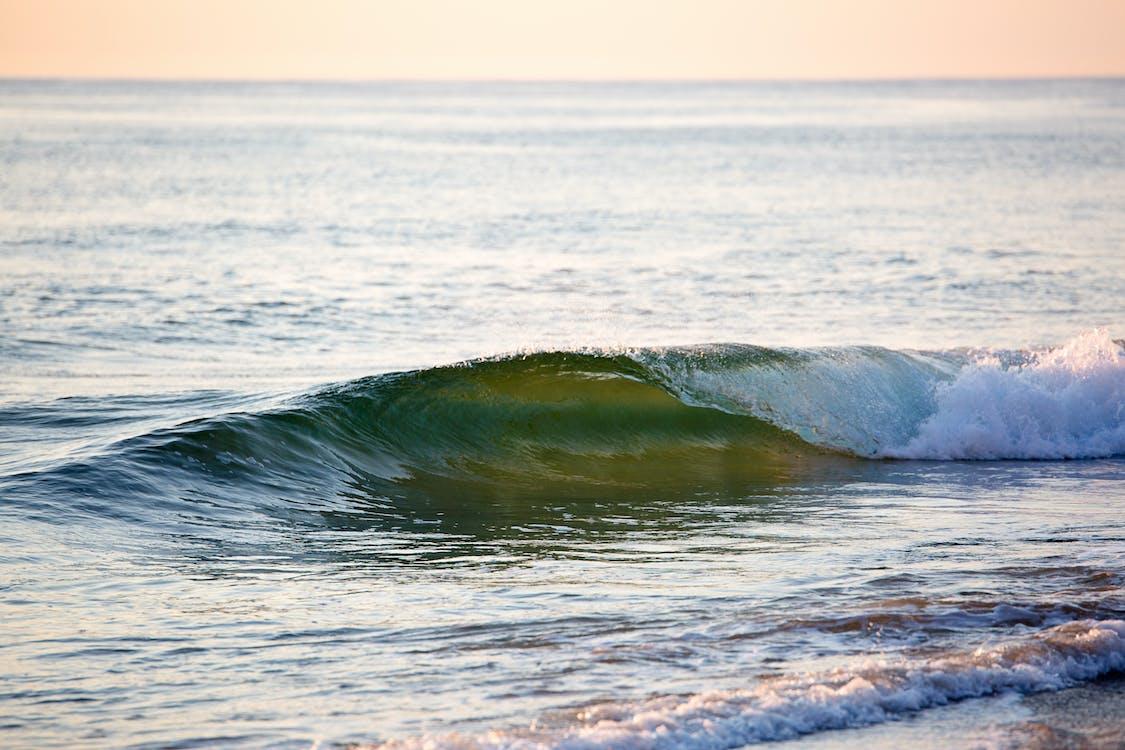 bølger, hav, havkyst