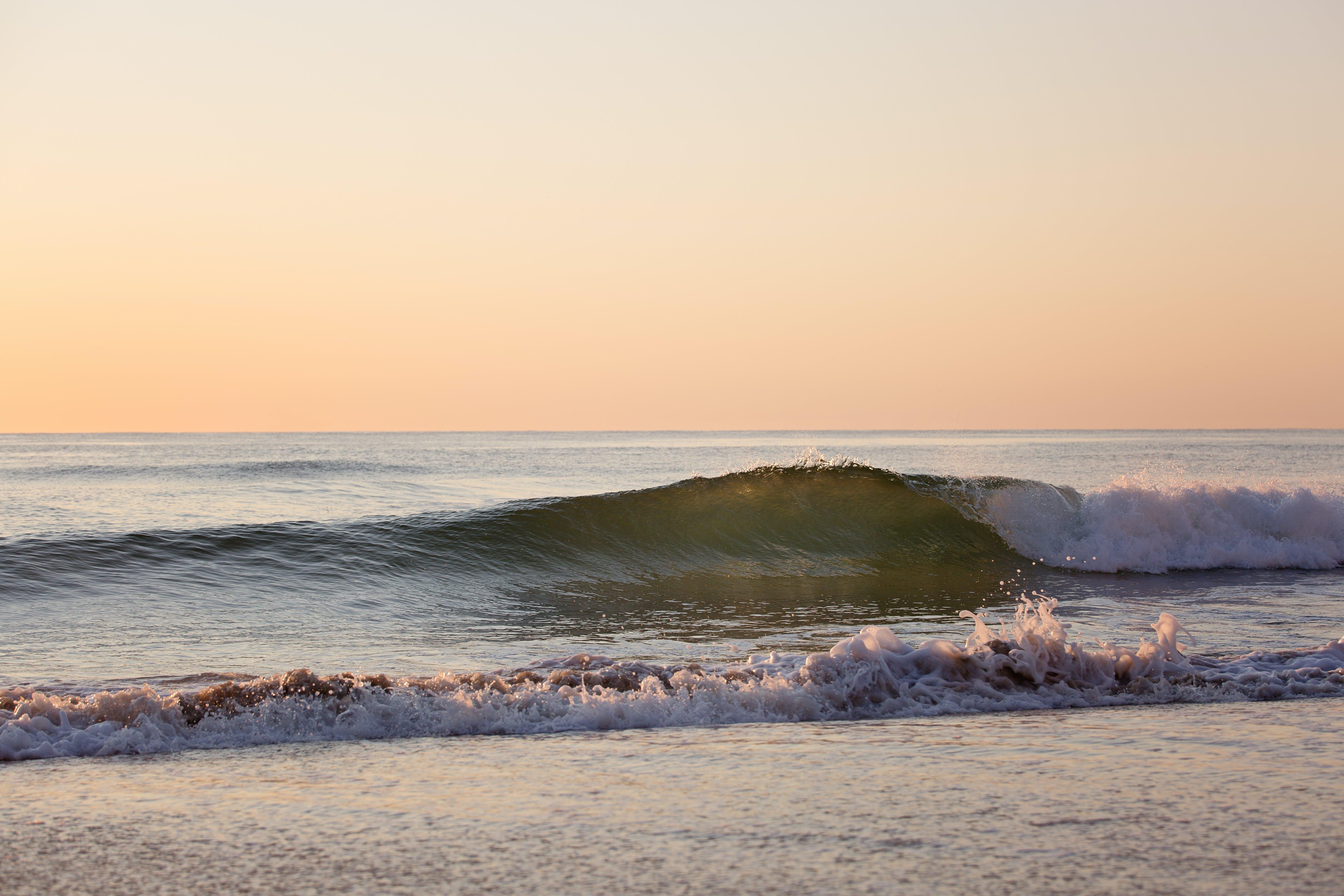 Δωρεάν στοκ φωτογραφιών με ακτή, άμμος, αφρός της θάλασσας, γνέφω
