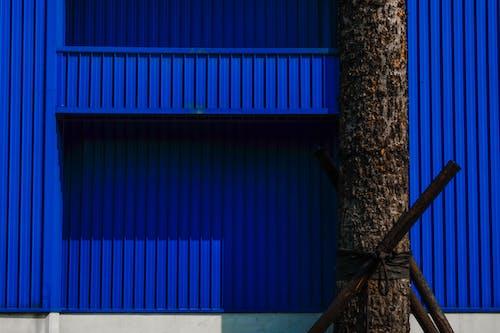 ストリート写真, パターン, ミニマリズム, ミニマルの無料の写真素材