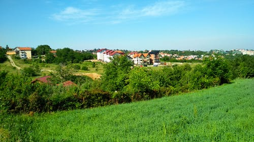 Бесплатное стоковое фото с деревня, дерево, Загородный дом, зеленый