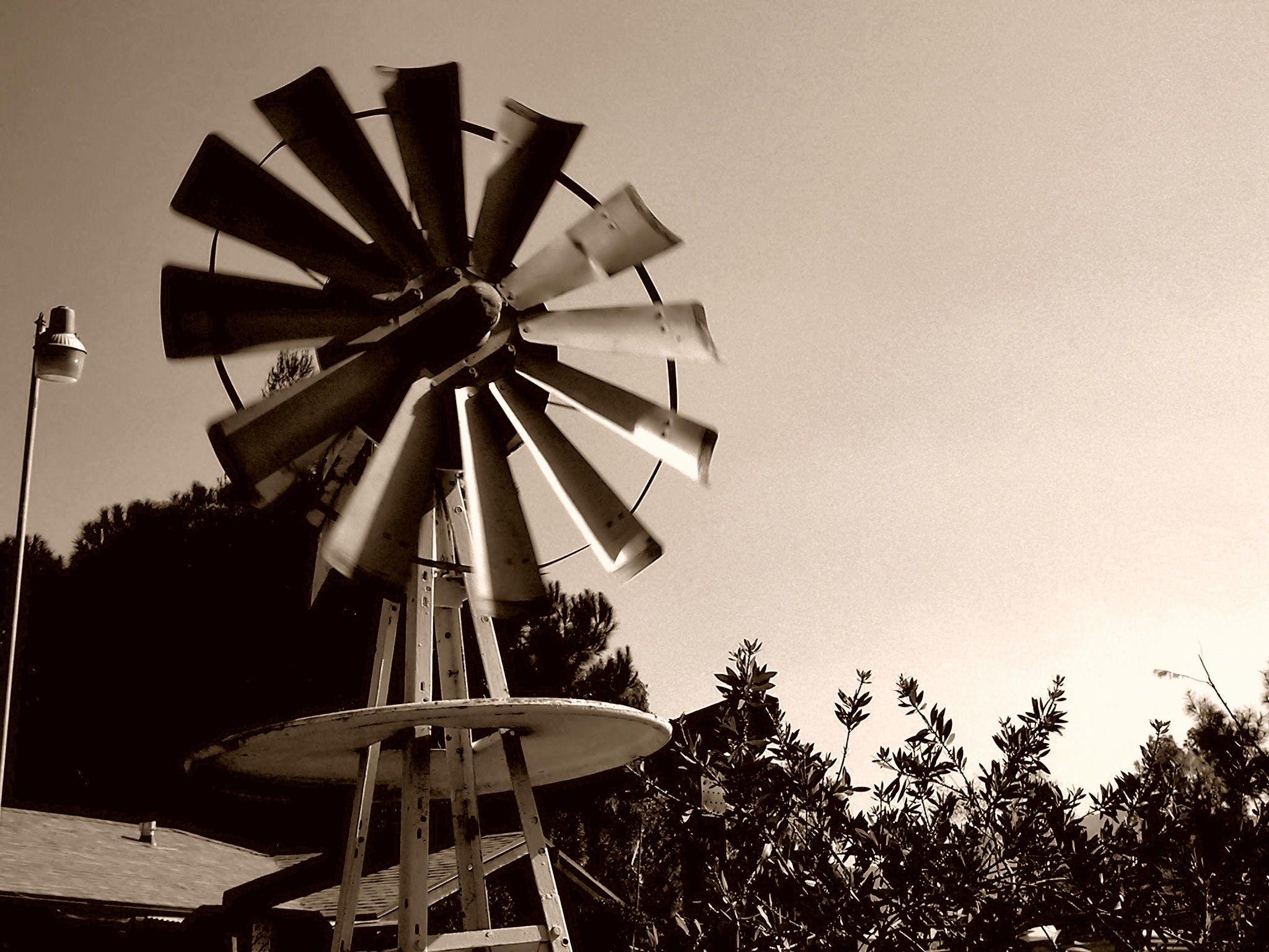 Free stock photo of farm, farming, windy