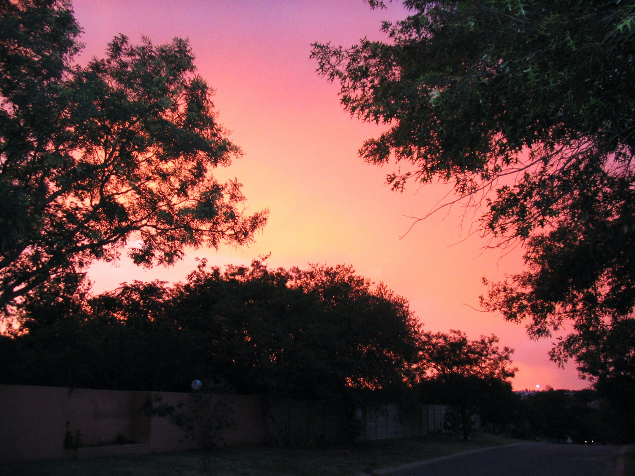 Free stock photo of suburbia, sunset