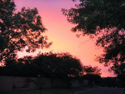 Foto stok gratis matahari terbenam, pinggiran kota