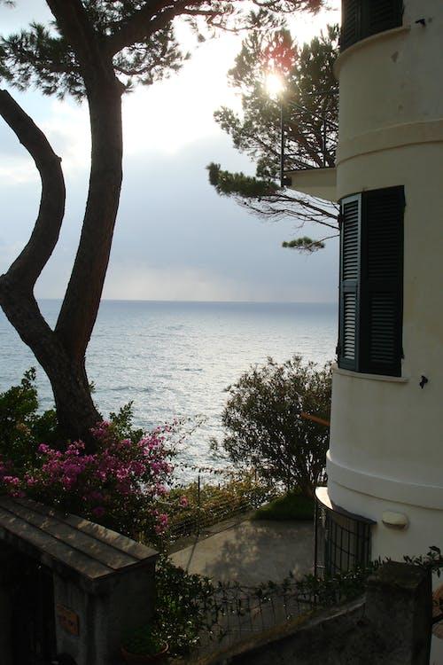 Foto stok gratis komposisi, lautan