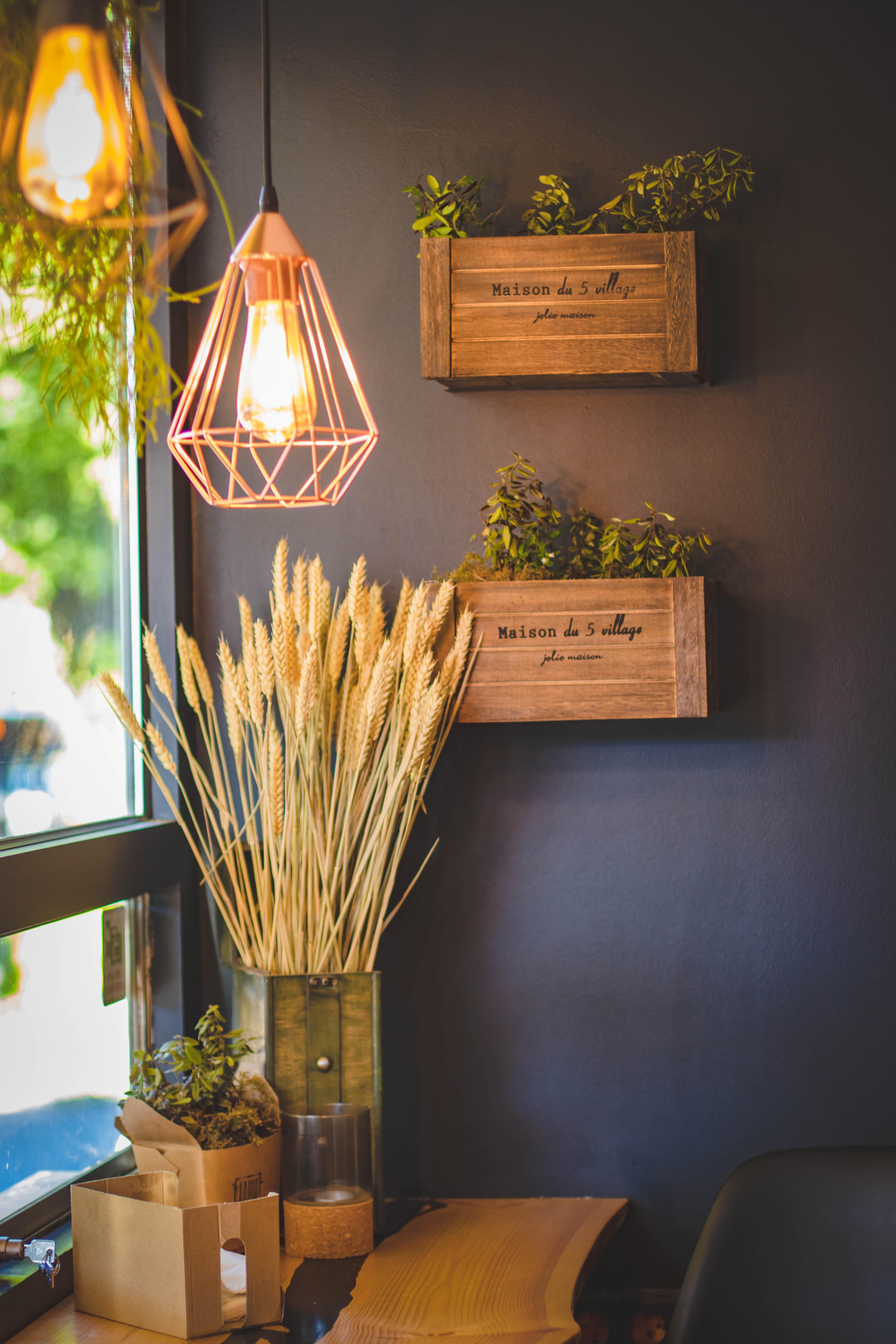 Free stock photo of bright, decoration, design