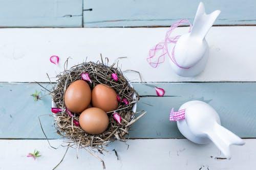 Бесплатное стоковое фото с flat lay, гнездо, пасха, пасхальные яйца