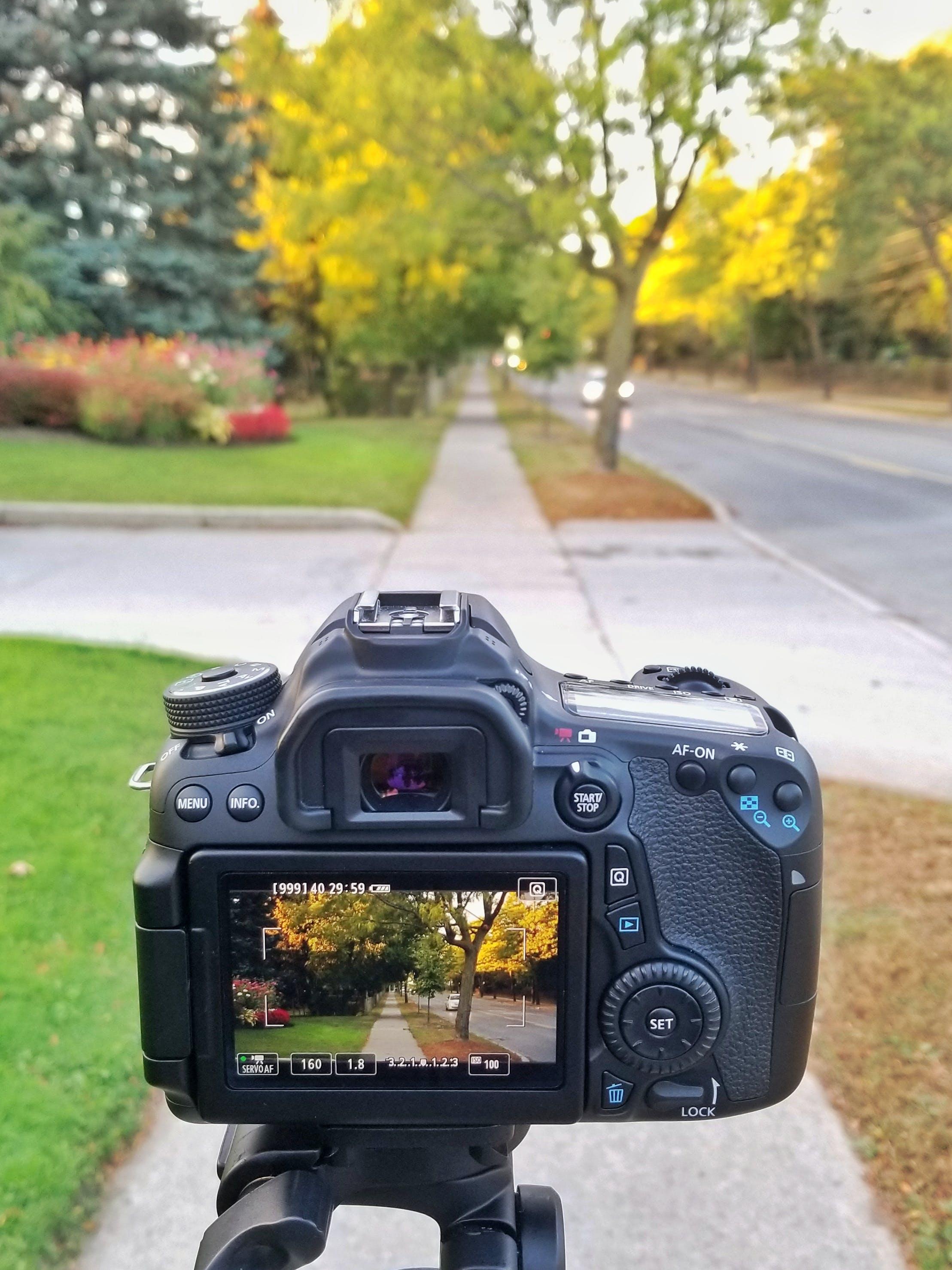 DSLR, 동영상 촬영, 디지털 카메라, 뷰파인더의 무료 스톡 사진