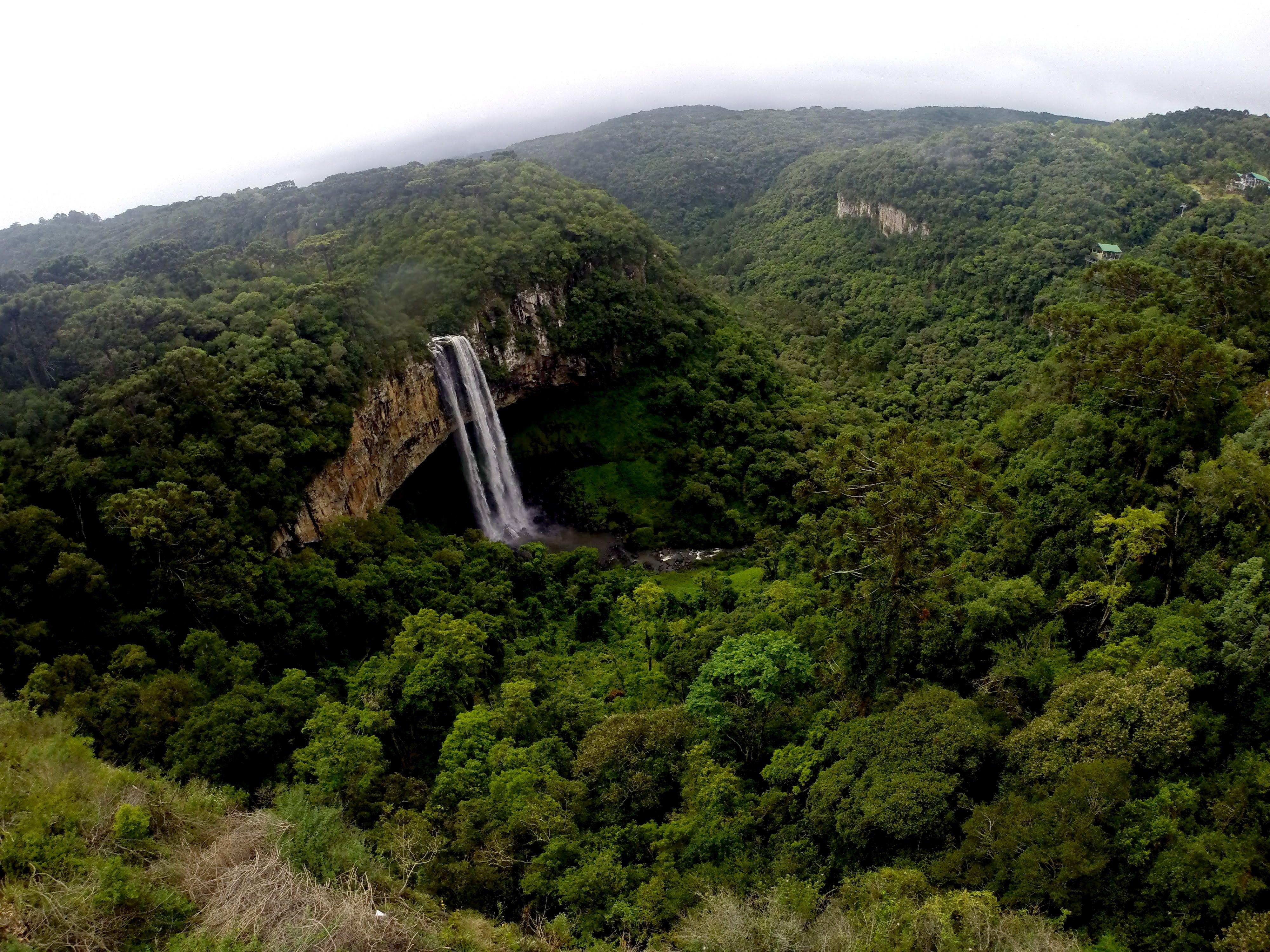 Free stock photo of brasil, cachoeira, canela