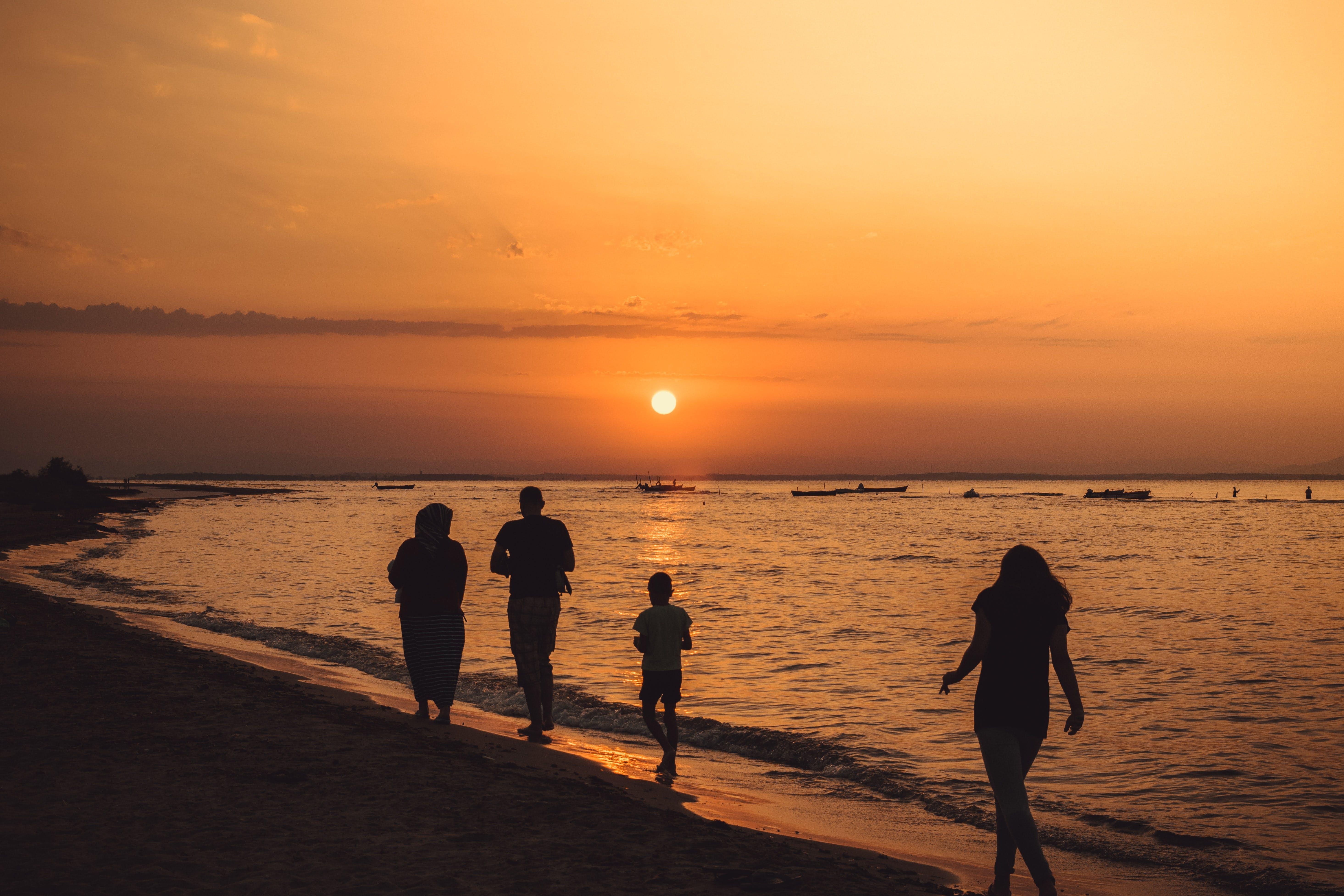 Silhouette Of People Walking On Seashore During Sunset