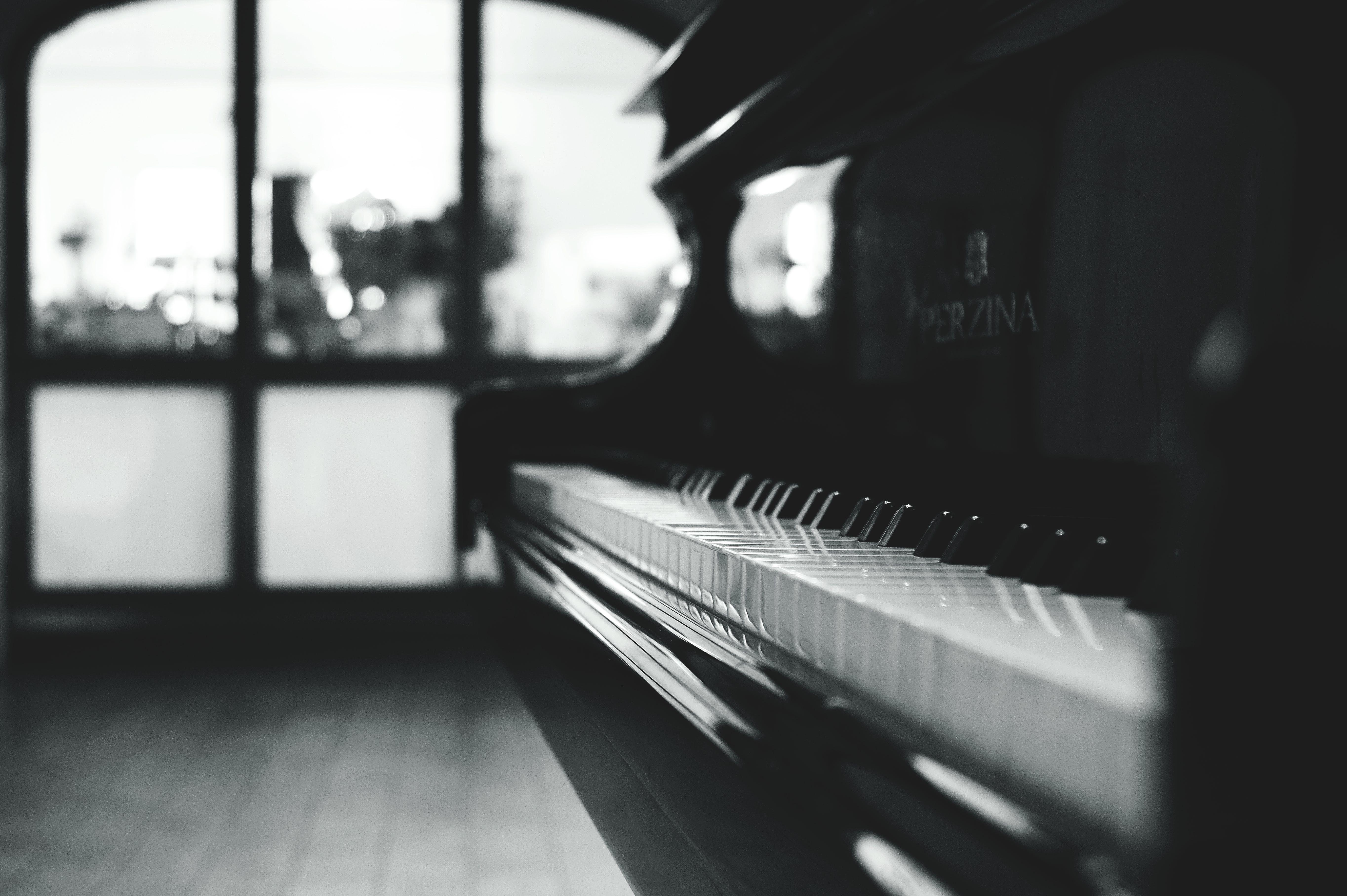 Black Grand Piano Gray Scale Photo
