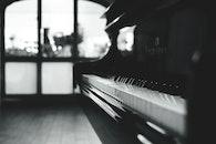 black-and-white, piano, macro