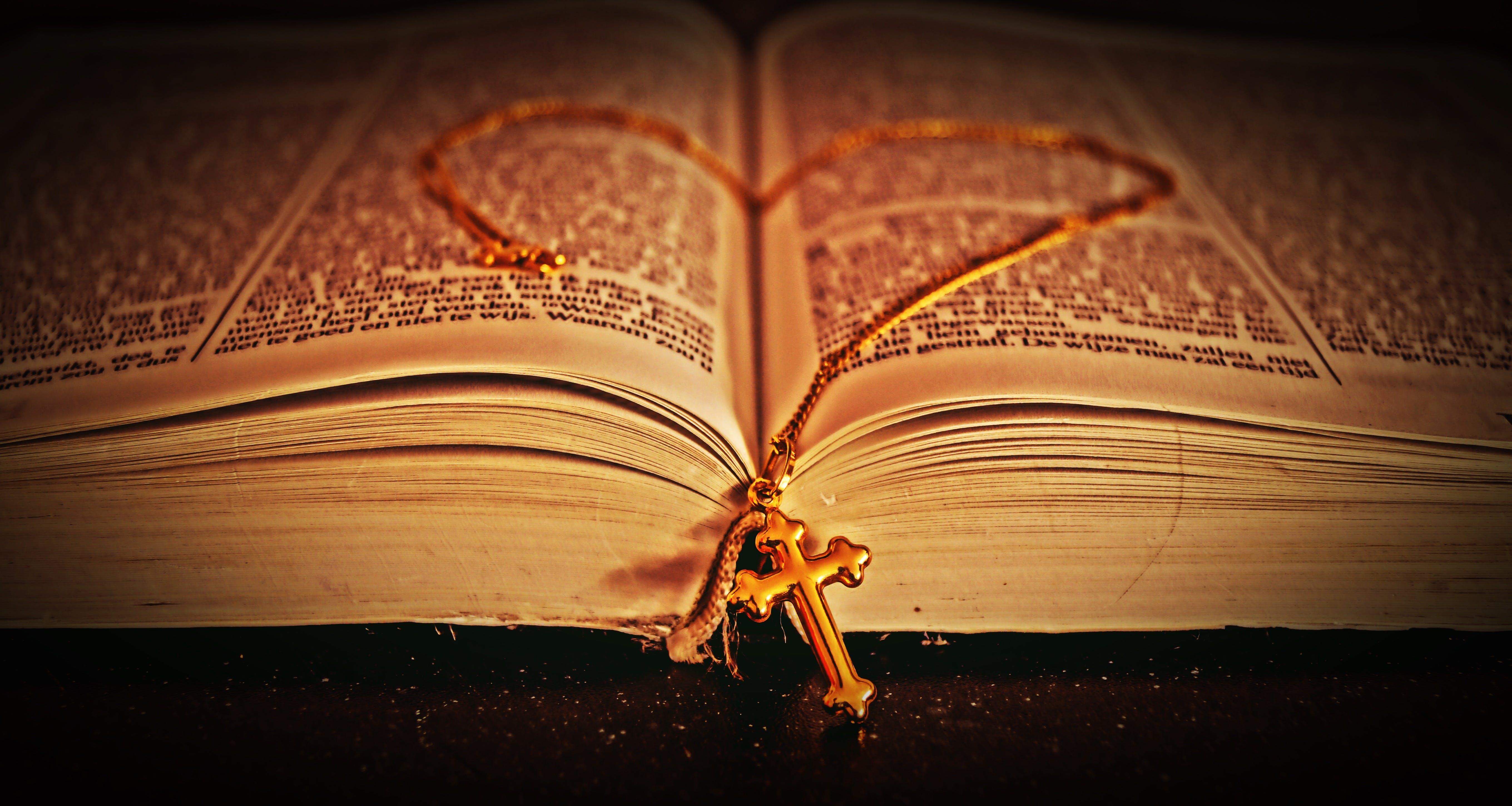 book, close-up, close-up view