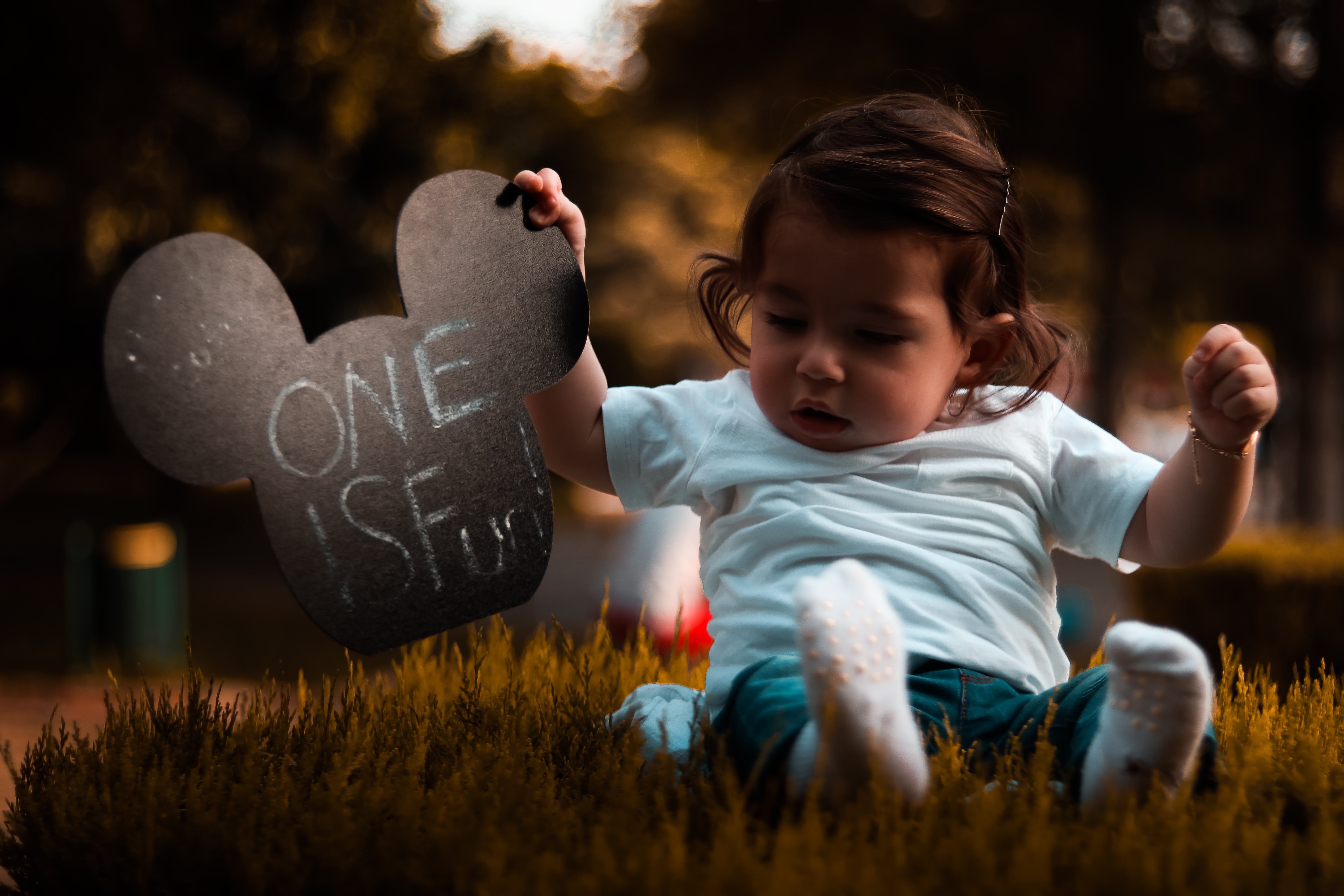 Baby Wearing Blue Shirt Holding Mickey Mouse Head Cutout Sitting on Grass