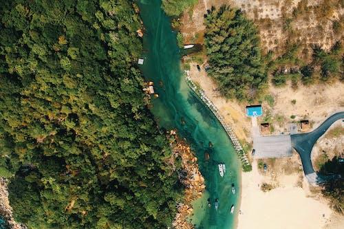 Foto profissional grátis de aerofotografia, água, árvores, barcos