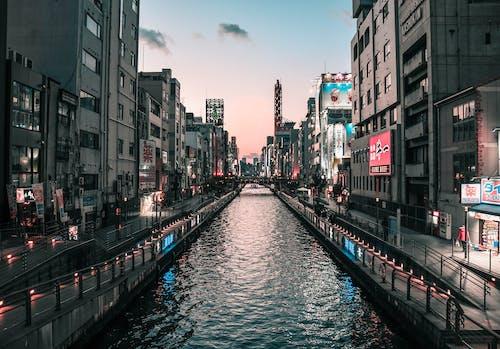 Kostnadsfri bild av arkitektur, bro, byggnader, dagsljus