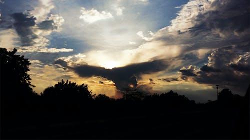 Kostenloses Stock Foto zu águila en las nubes