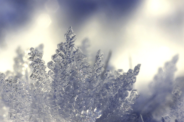led, ledové krystaly, makro