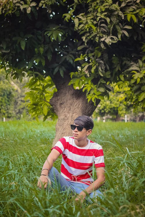 Základová fotografie zdarma na téma hřiště, muž, osoba, strom