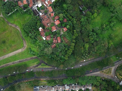 Bird's Eye View OfHouses Surrounded By Trees